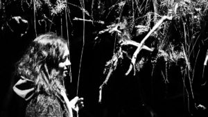 pika-golub-text-rahmen-haunting-thoughts