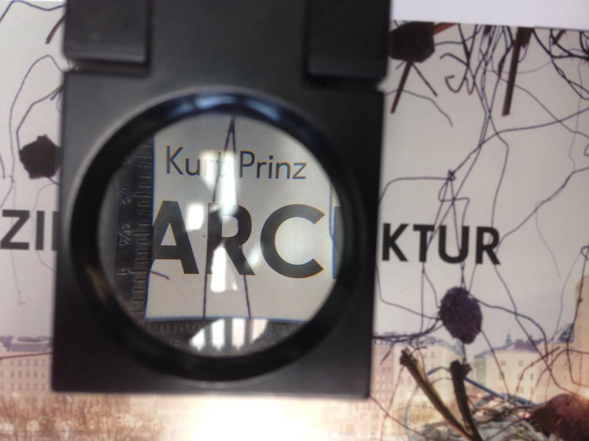 TextRahmen-Kurt-Prinz-Sezierte-Architektur-Wien-00009